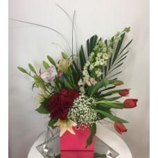 Boxed Tulip Special